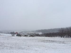 The frozen slippery tundra